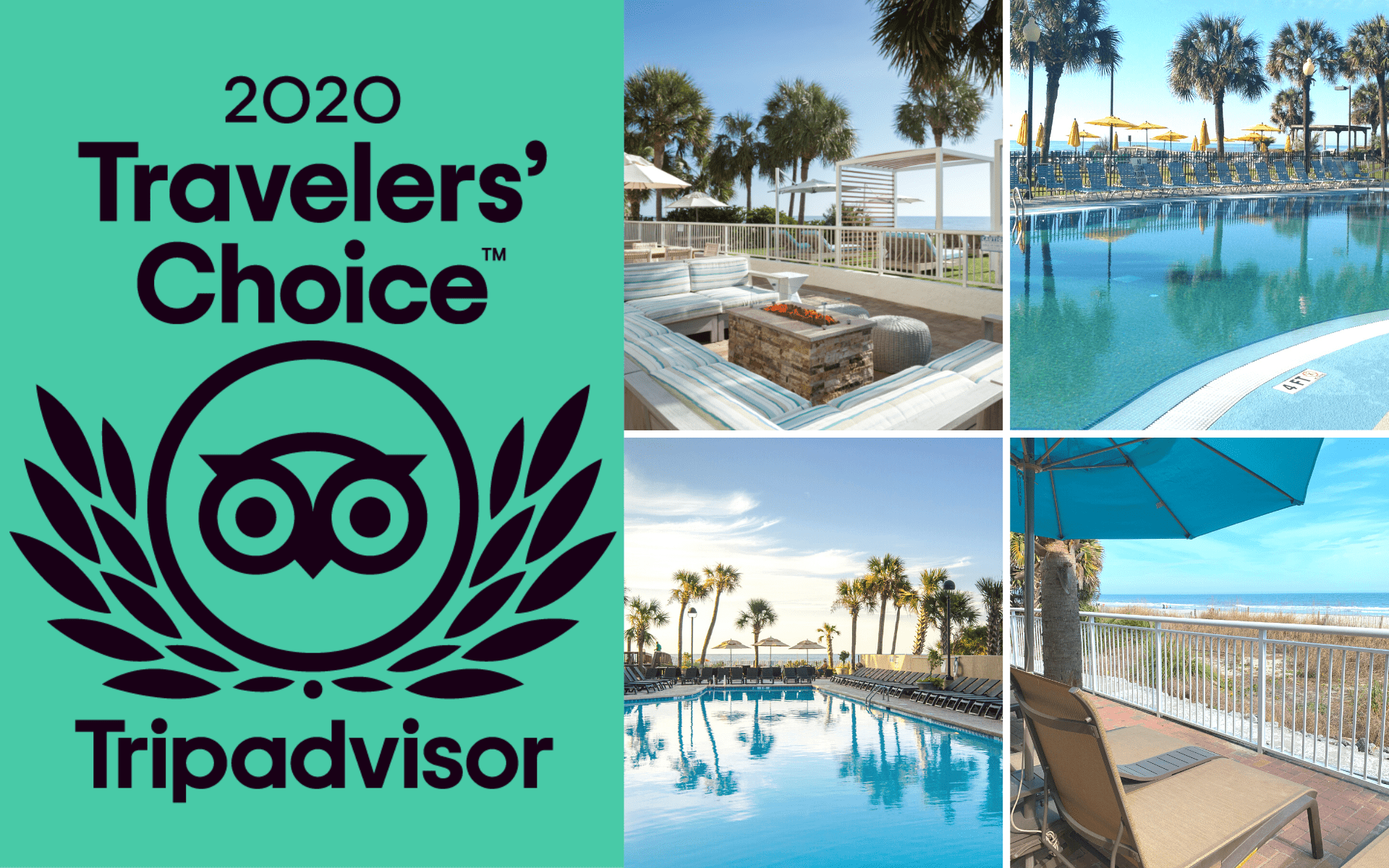 TripAdvisor award featuring The Strand, Dayton House, Ocean Reef, and Paradise Resort